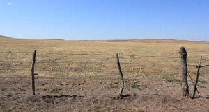 photo of a pasture fence in the sand hills