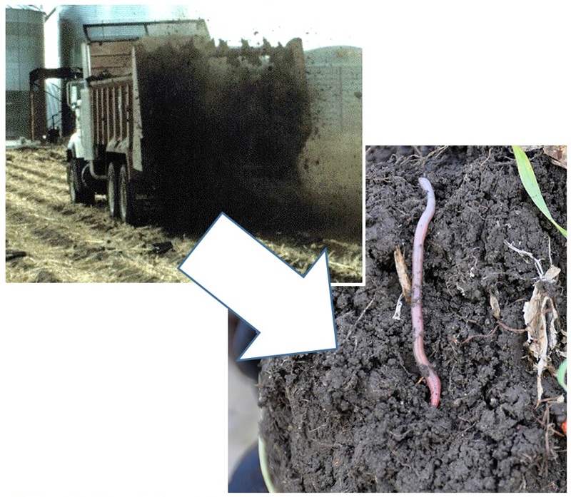 Photos of manure application and close up of soil