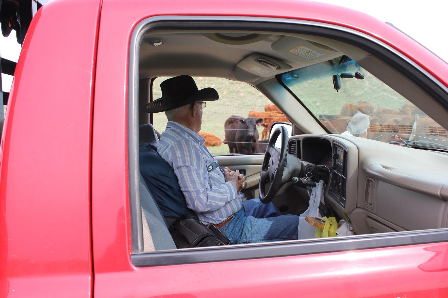 Rancher in pickup