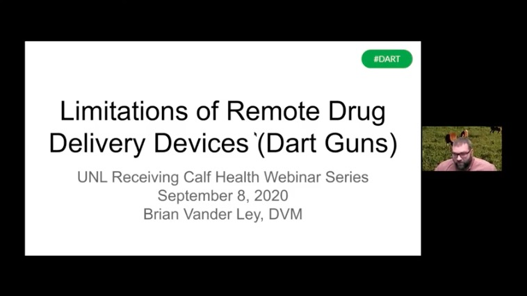 link to Limitations of Remote Drug Delivery Devices for Cattle Health Management