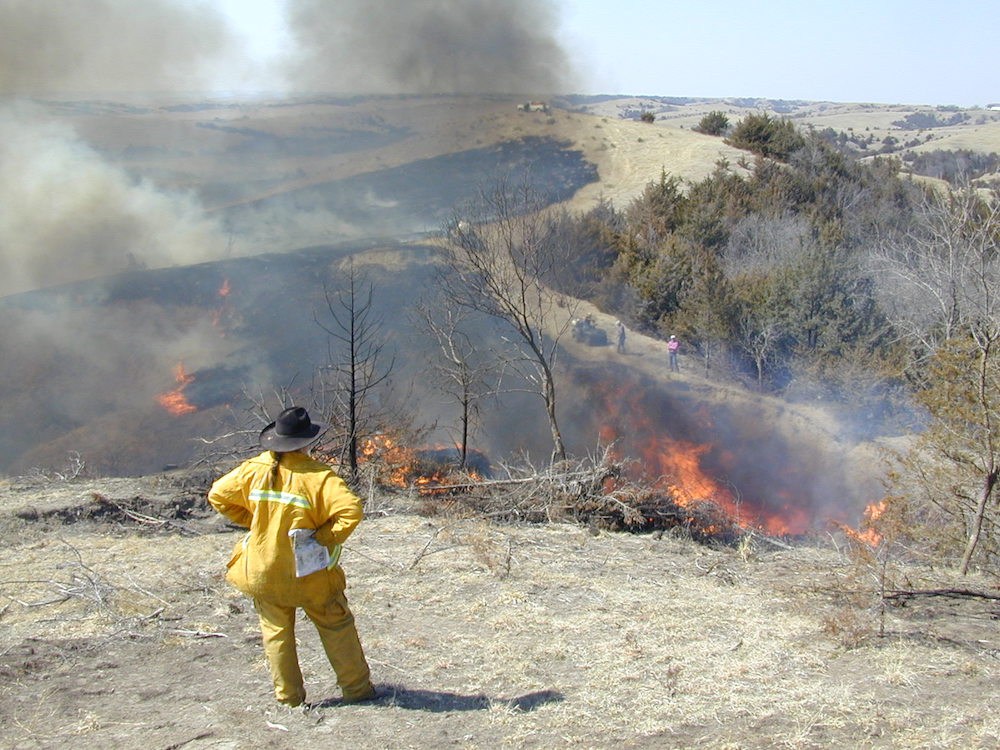 person supervising a prescribed burn