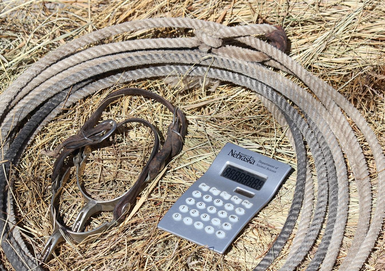 lasso and calculator