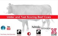 Udder & Teat Scoring mobile app screen capture