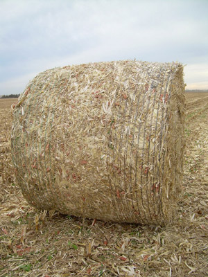 photo of large round bale of corn stover