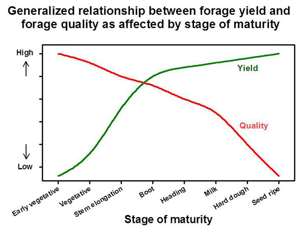 Graph: Relationship between forage yield and forage quality