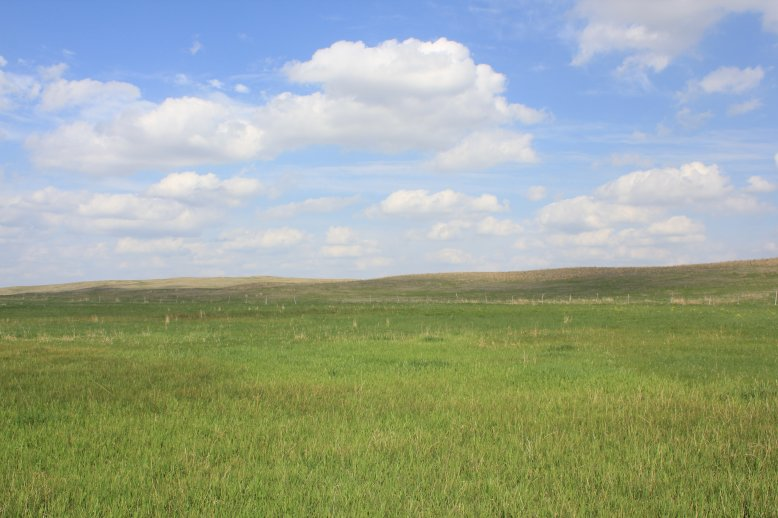 rangeland in the Nebraska sandhills