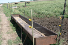 photo of trough by pasture